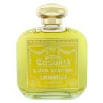 20e_santa_maria_novella_mimosa.jpg