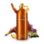data-brands-montale-montale-orange-aoud-3-800x800